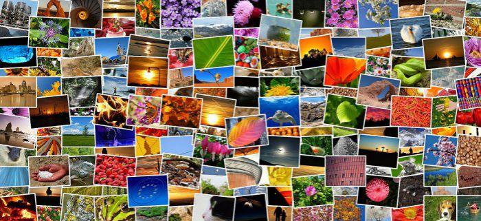 collage, come ottimizzare le immagini su wordpress